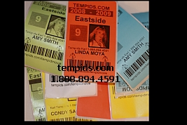 Example of Temporary ID Badge Labels Different Colors